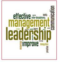 The 7 Levels of Effective Management Development